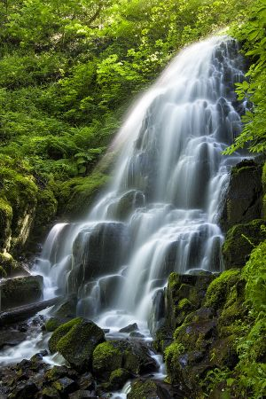 fairy-falls-oregon-landscape-nature.jpg